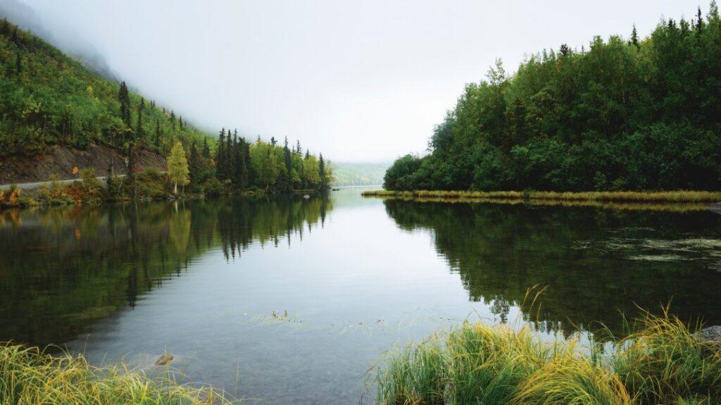 Science et mobilisation citoyenne au service de l'eau